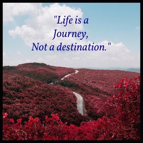 motivation, inspiration, weightloss, weightloss journey, say no to diets